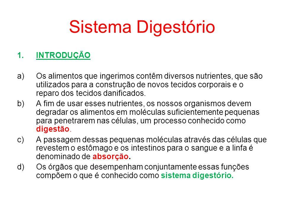 Sistema Digestório INTRODUÇÃO