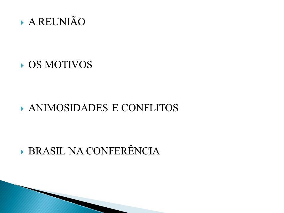 A REUNIÃO OS MOTIVOS ANIMOSIDADES E CONFLITOS BRASIL NA CONFERÊNCIA