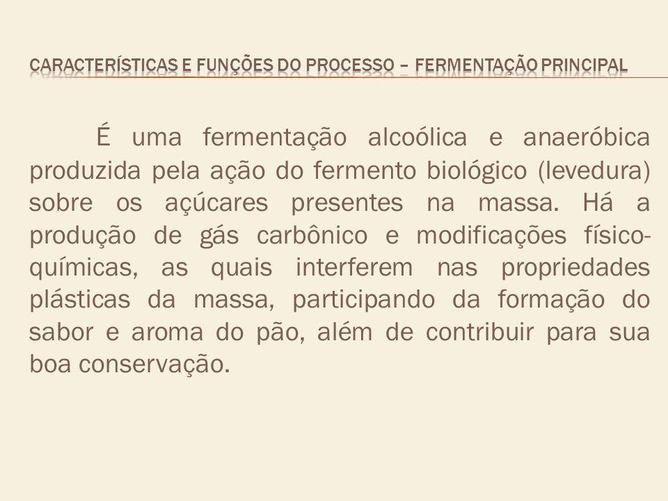 CARACTERÍSTICAS E FUNÇÕES DO PROCESSO – fermentação principal