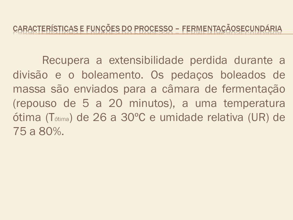 CARACTERÍSTICAS E FUNÇÕES DO PROCESSO – fermentaçãosecundária