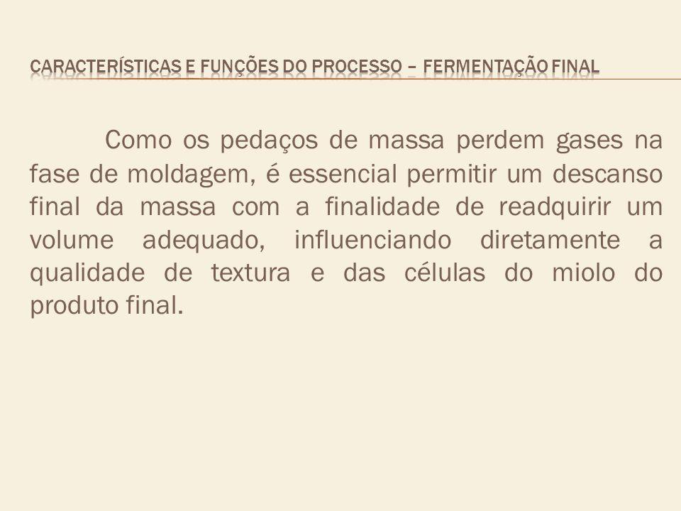 CARACTERÍSTICAS E FUNÇÕES DO PROCESSO – fermentação final