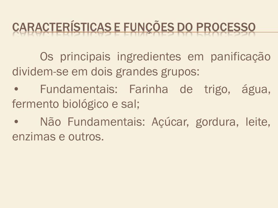 CARACTERÍSTICAS E FUNÇÕES DO PROCESSO