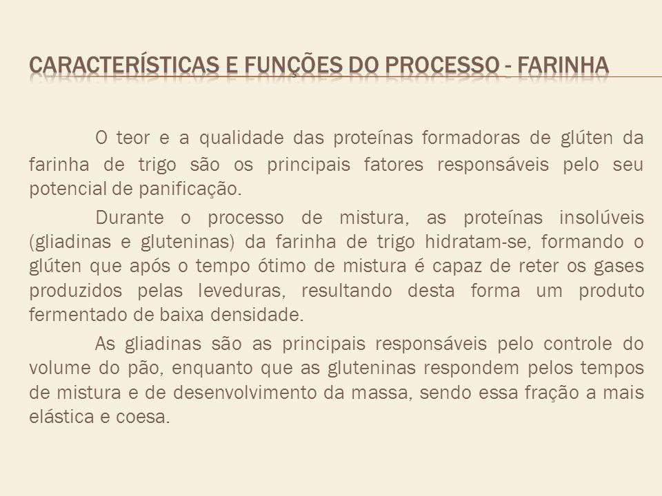 CARACTERÍSTICAS E FUNÇÕES DO PROCESSO - FARINHA