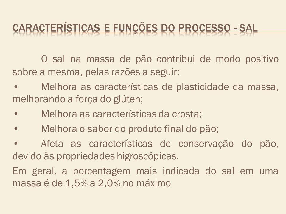 CARACTERÍSTICAS E FUNÇÕES DO PROCESSO - sal