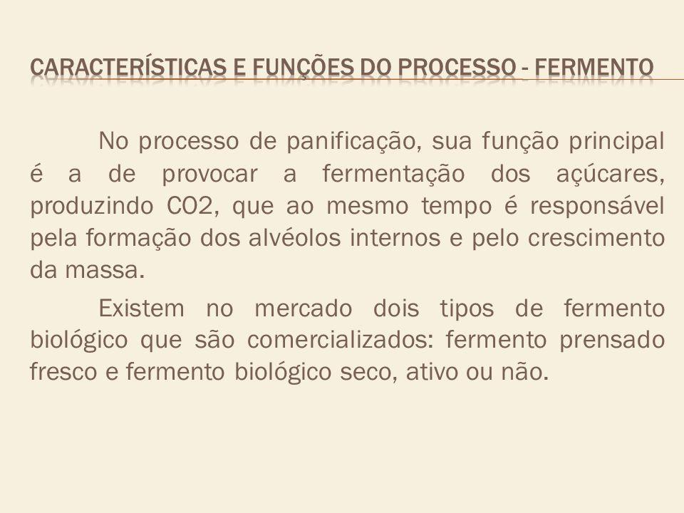 CARACTERÍSTICAS E FUNÇÕES DO PROCESSO - fermento