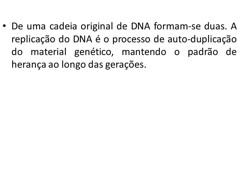 De uma cadeia original de DNA formam-se duas