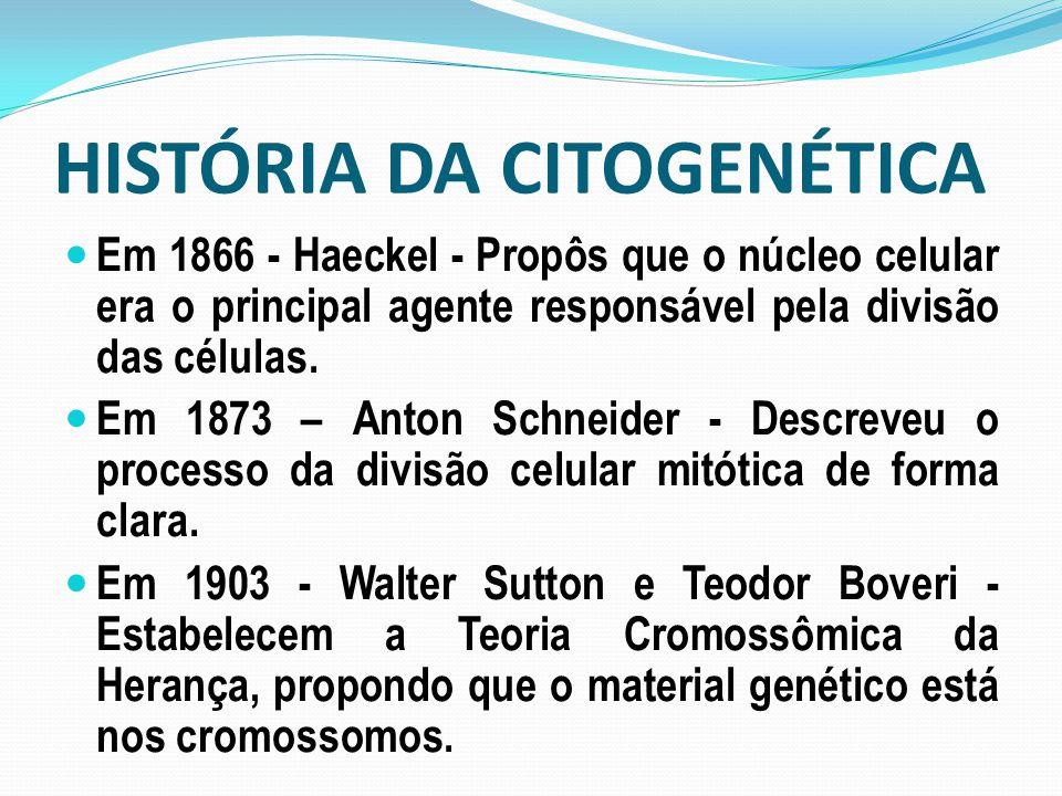 HISTÓRIA DA CITOGENÉTICA