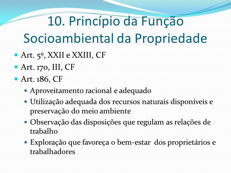 10. Princípio da Função Socioambiental da Propriedade