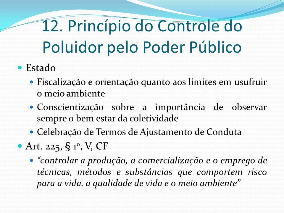 12. Princípio do Controle do Poluidor pelo Poder Público