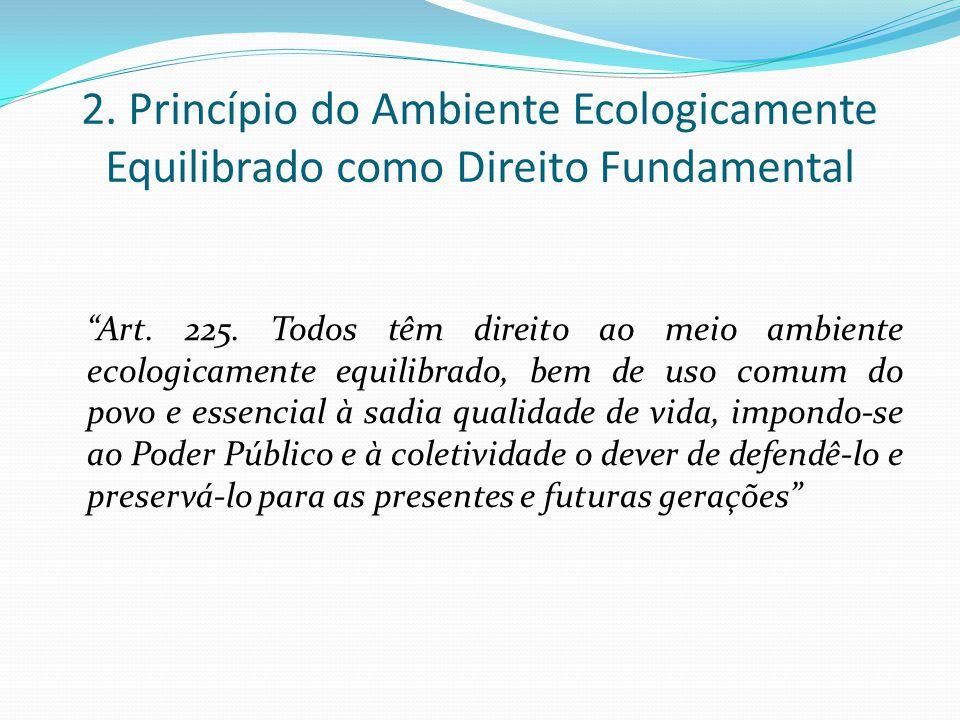 2. Princípio do Ambiente Ecologicamente Equilibrado como Direito Fundamental