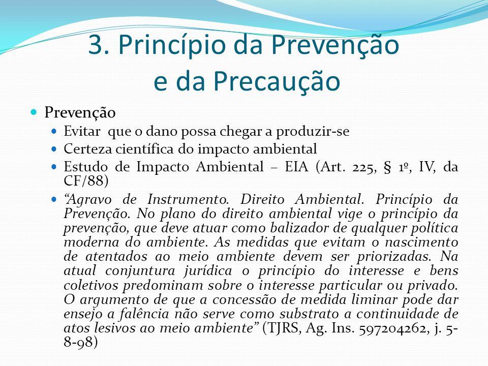 3. Princípio da Prevenção e da Precaução