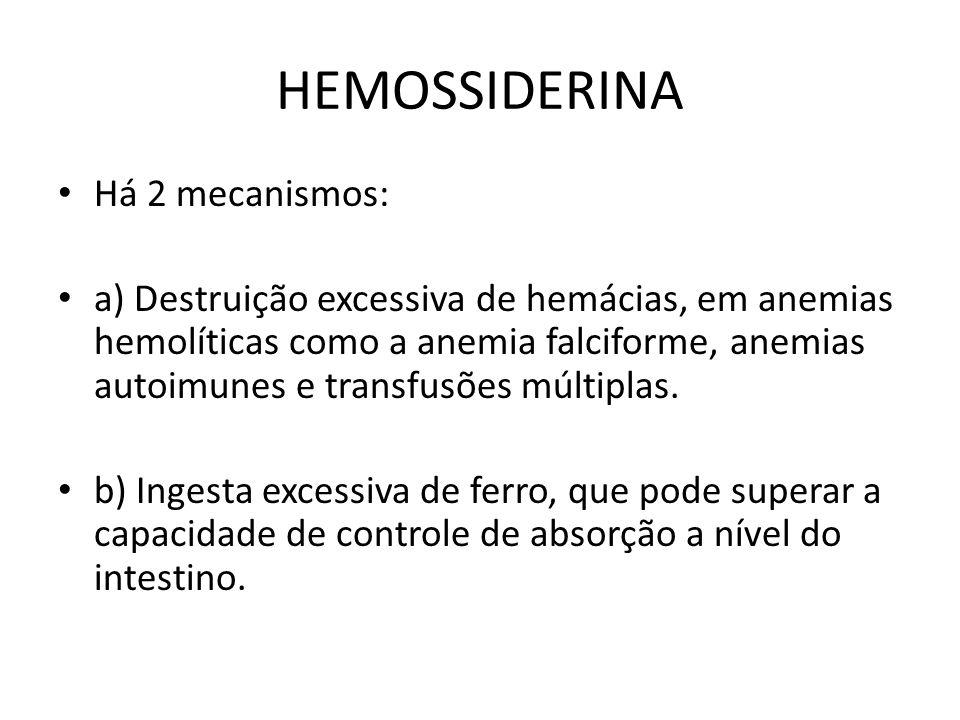 HEMOSSIDERINA Há 2 mecanismos: