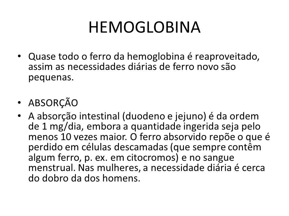 HEMOGLOBINA Quase todo o ferro da hemoglobina é reaproveitado, assim as necessidades diárias de ferro novo são pequenas.