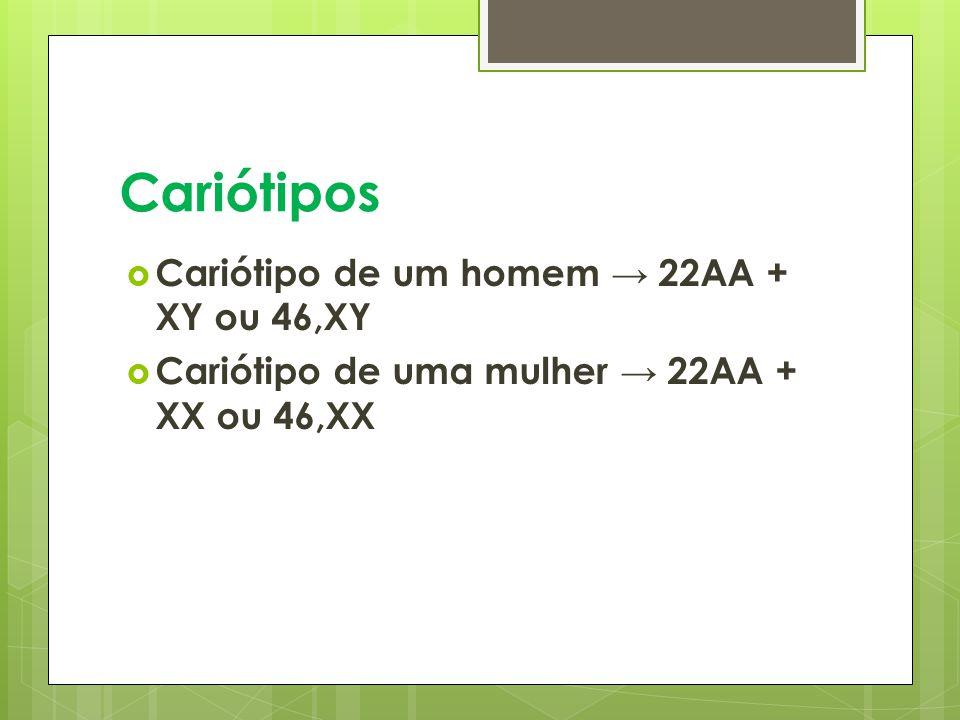 Cariótipos Cariótipo de um homem → 22AA + XY ou 46,XY
