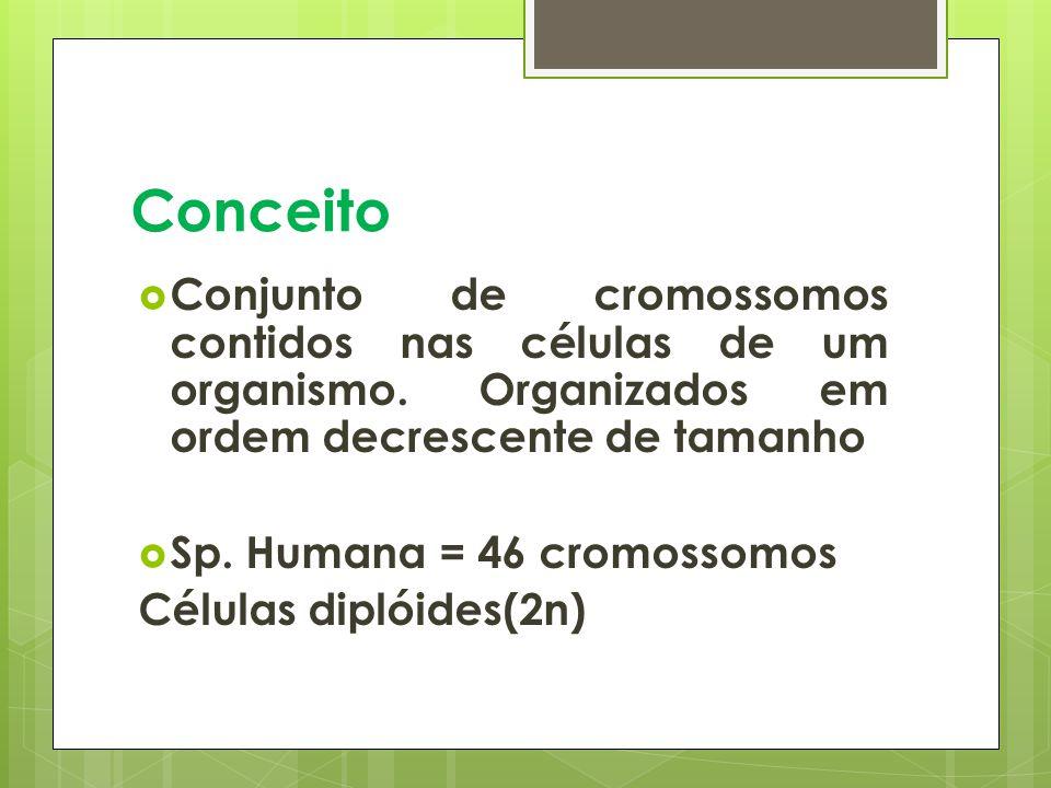 Conceito Conjunto de cromossomos contidos nas células de um organismo. Organizados em ordem decrescente de tamanho.