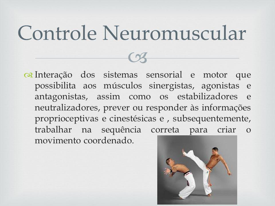 Controle Neuromuscular
