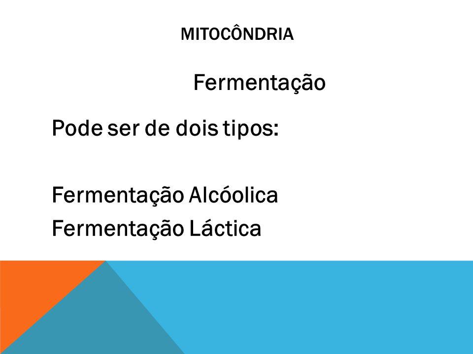 Pode ser de dois tipos: Fermentação Alcóolica Fermentação Láctica