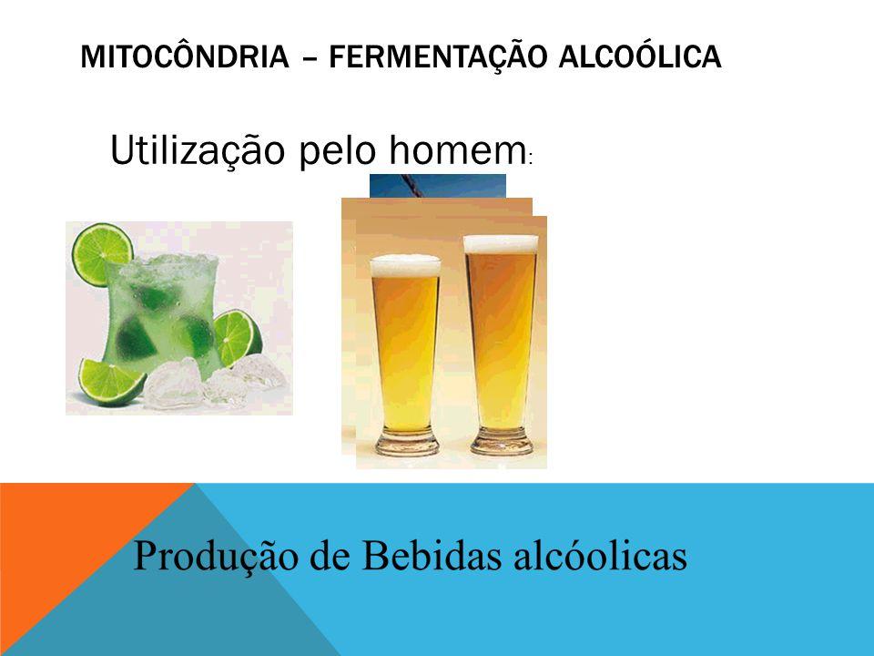MITOCÔNDRIA – FERMENTAÇÃO ALCOÓLICA
