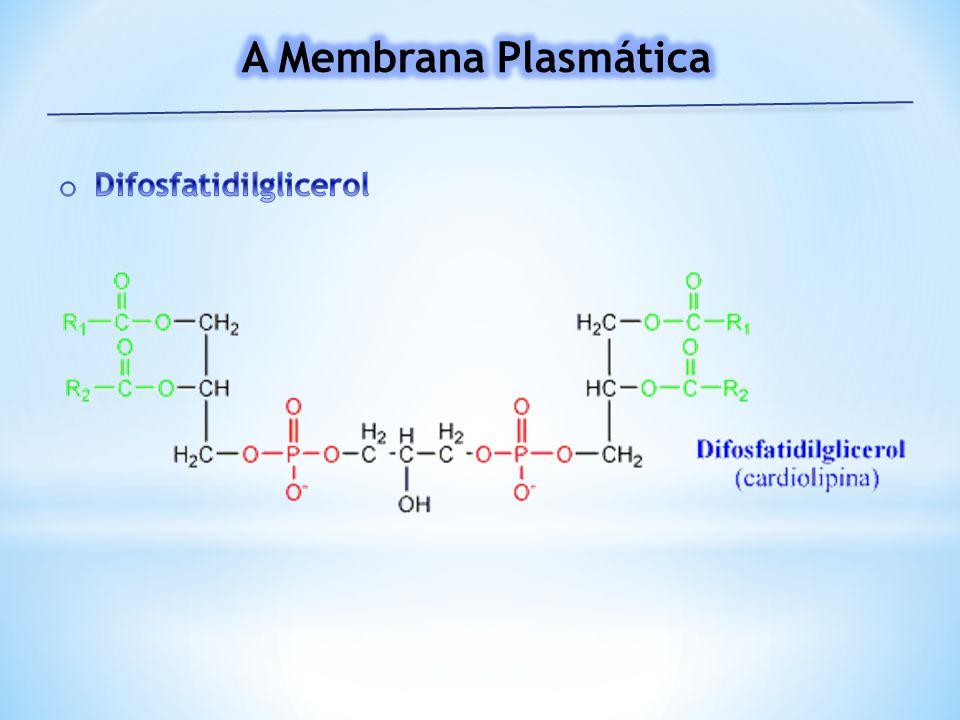 A Membrana Plasmática Difosfatidilglicerol
