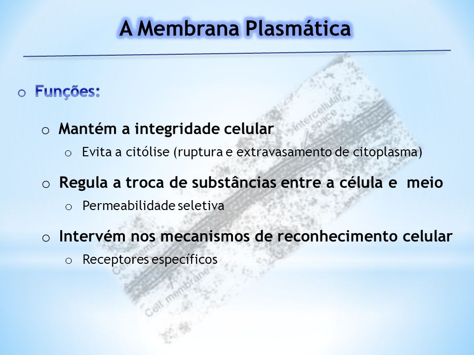 A Membrana Plasmática Funções: Mantém a integridade celular