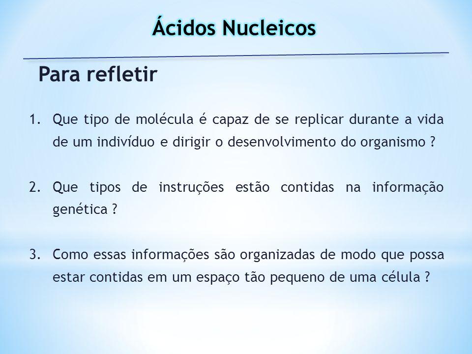 Ácidos Nucleicos Para refletir