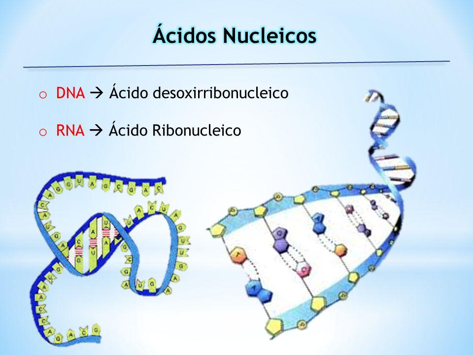 Ácidos Nucleicos DNA  Ácido desoxirribonucleico