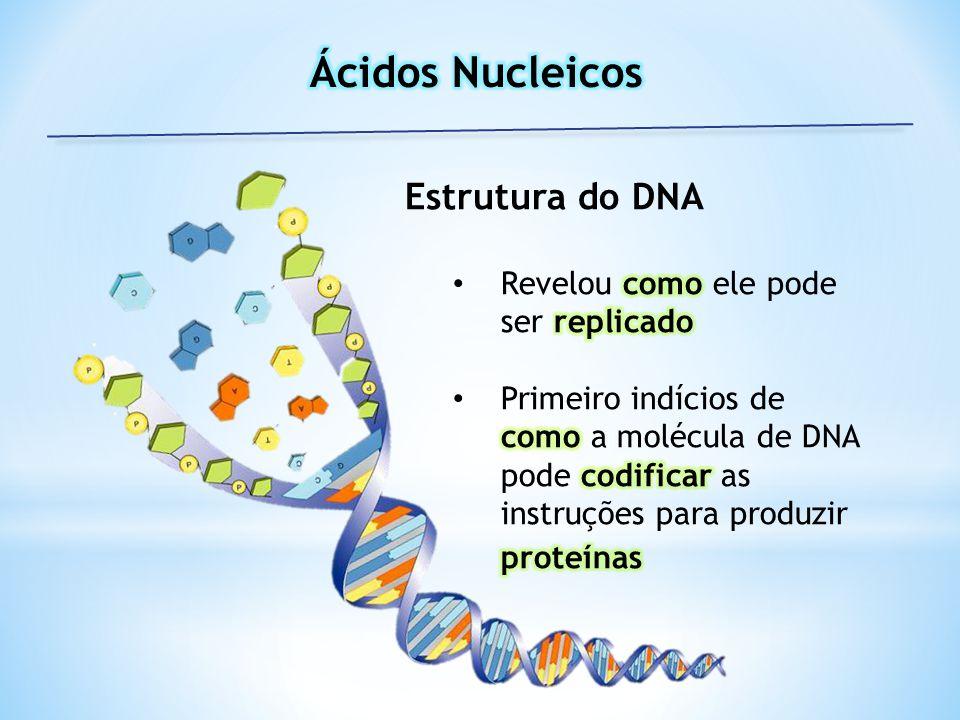 Ácidos Nucleicos Estrutura do DNA Revelou como ele pode ser replicado