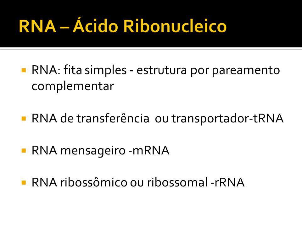 RNA – Ácido Ribonucleico