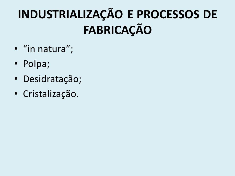 INDUSTRIALIZAÇÃO E PROCESSOS DE FABRICAÇÃO