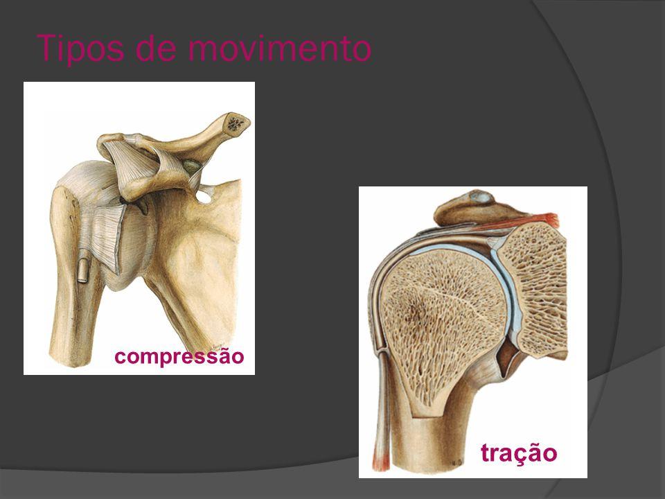 Tipos de movimento compressão tração