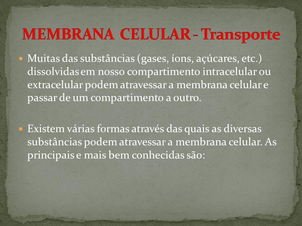 MEMBRANA CELULAR - Transporte