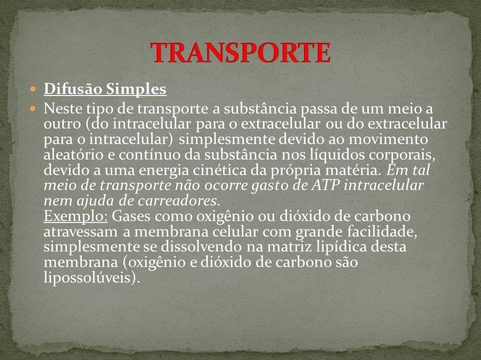 TRANSPORTE Difusão Simples