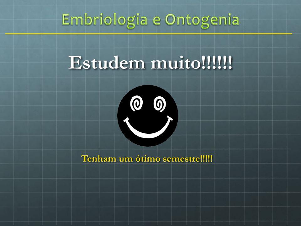 Embriologia e Ontogenia Tenham um ótimo semestre!!!!!