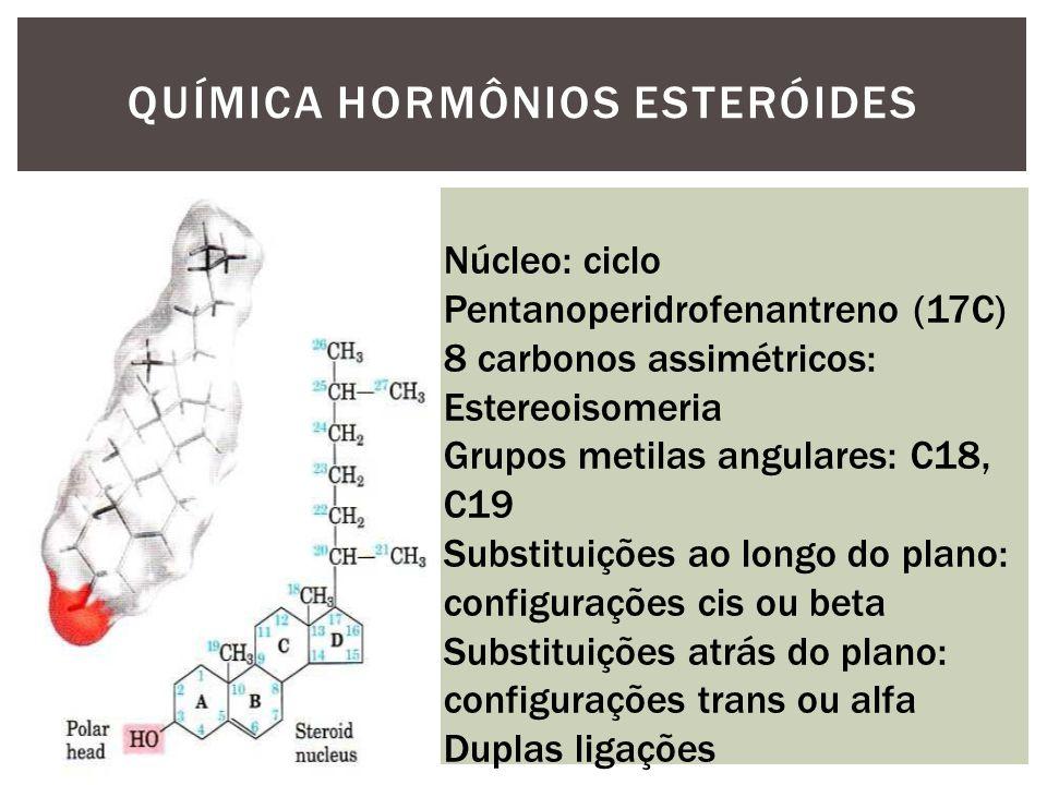 QUÍMICA HORMÔNIOS ESTERÓIDES