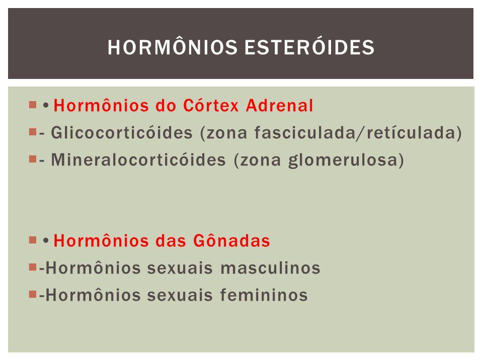 HORMÔNIOS ESTERÓIDES •Hormônios do Córtex Adrenal