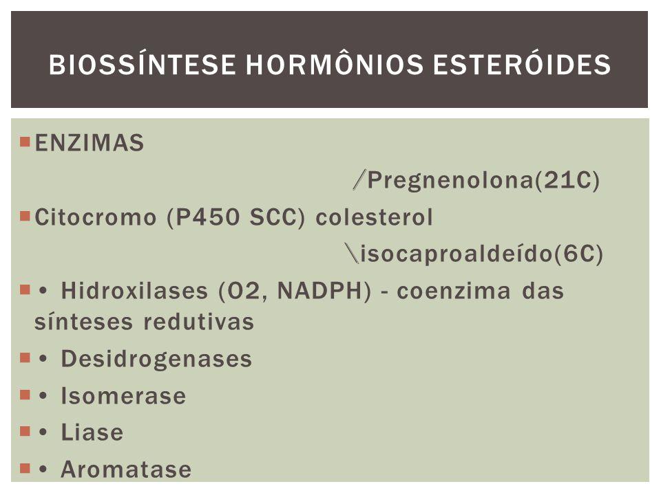 BIOSSÍNTESE HORMÔNIOS ESTERÓIDES