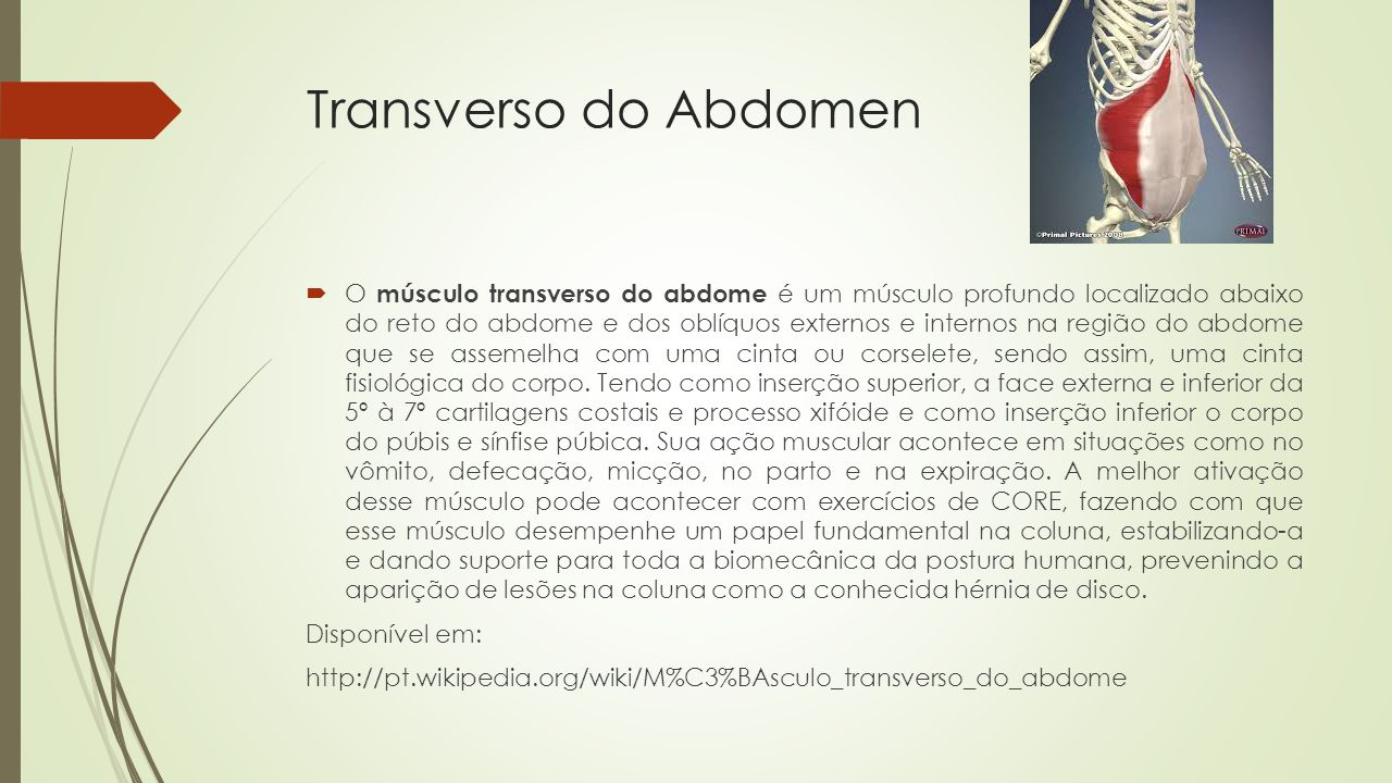 Transverso do Abdomen