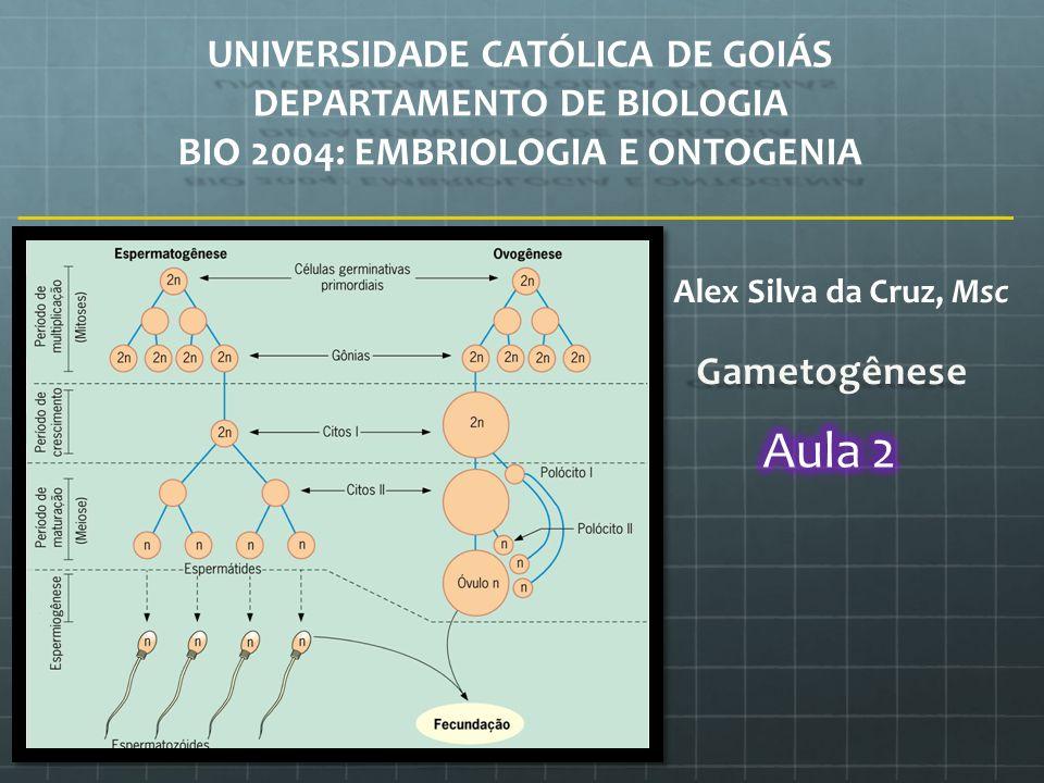 Aula 2 UNIVERSIDADE CATÓLICA DE GOIÁS DEPARTAMENTO DE BIOLOGIA