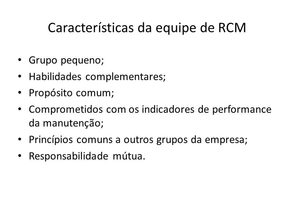 Características da equipe de RCM