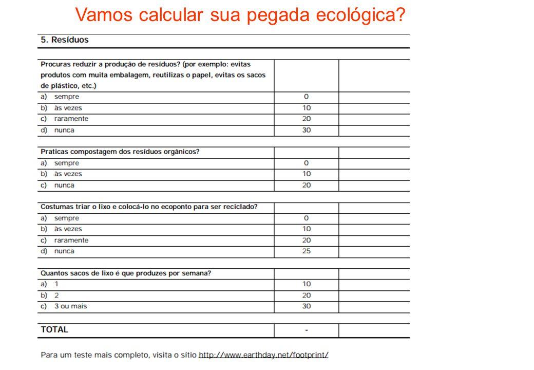 Vamos calcular sua pegada ecológica