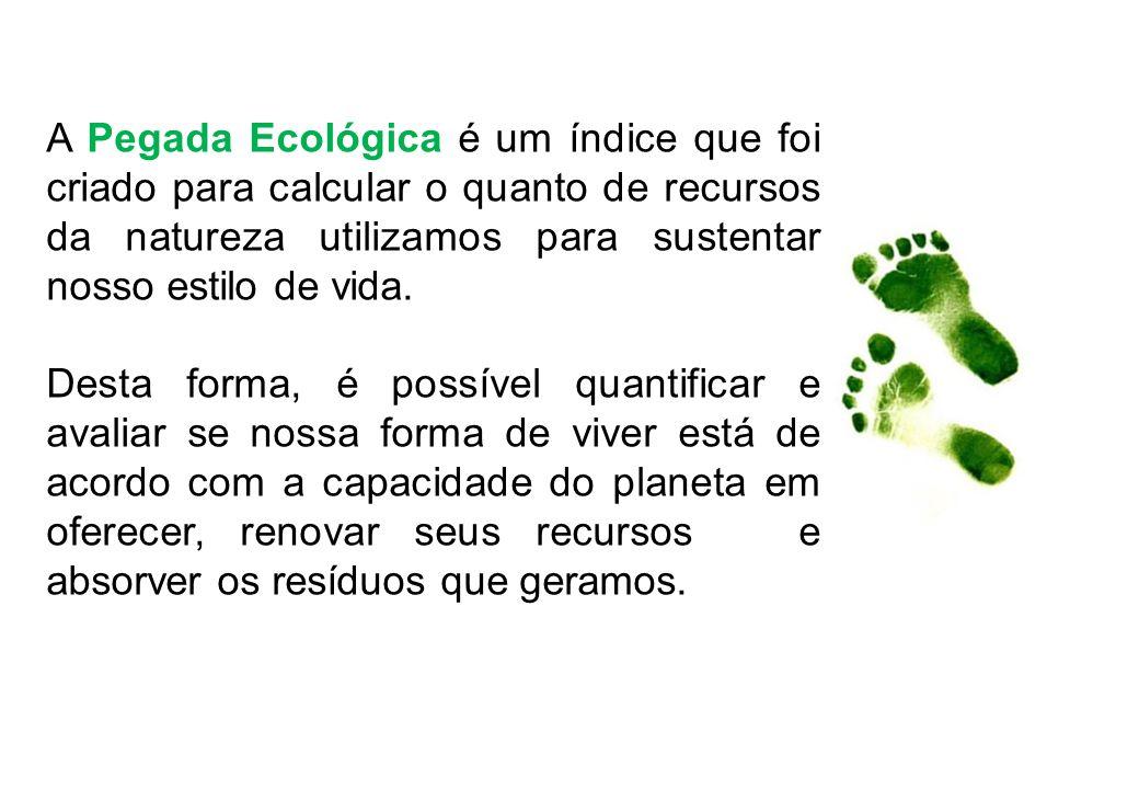 A Pegada Ecológica é um índice que foi criado para calcular o quanto de recursos da natureza utilizamos para sustentar nosso estilo de vida.