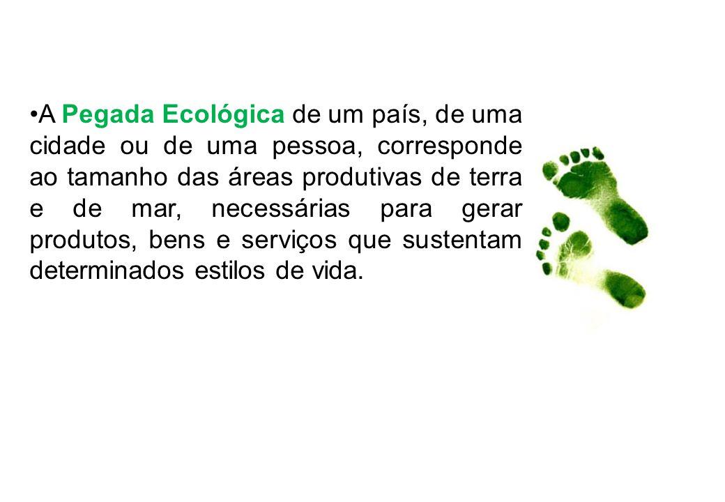 A Pegada Ecológica de um país, de uma cidade ou de uma pessoa, corresponde ao tamanho das áreas produtivas de terra e de mar, necessárias para gerar produtos, bens e serviços que sustentam determinados estilos de vida.