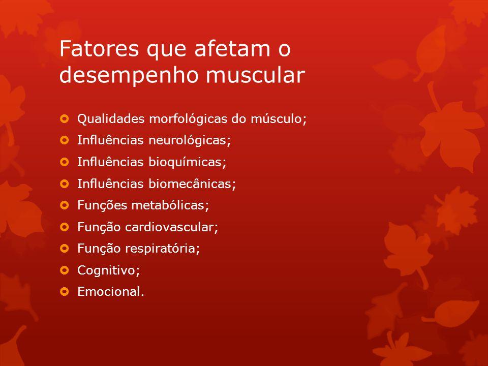 Fatores que afetam o desempenho muscular
