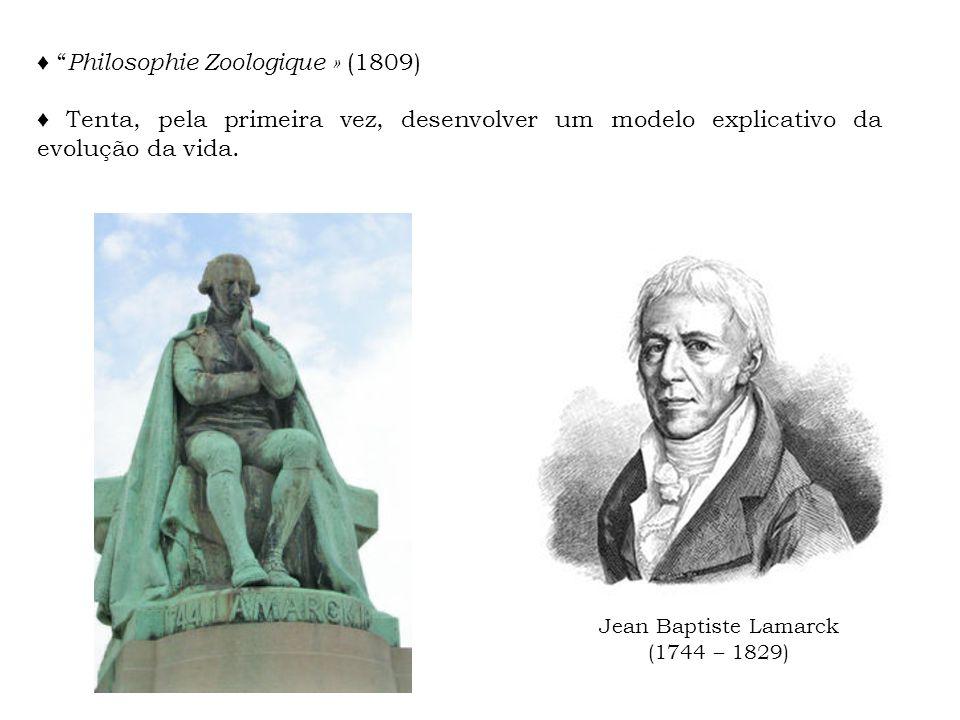 ♦ Philosophie Zoologique » (1809)