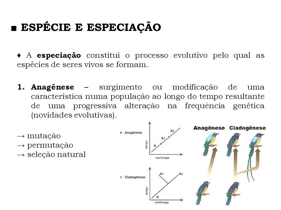 ■ ESPÉCIE E ESPECIAÇÃO ♦ A especiação constitui o processo evolutivo pelo qual as espécies de seres vivos se formam.