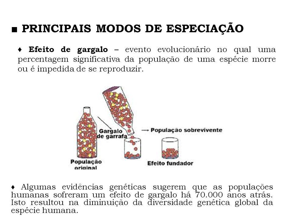 ■ PRINCIPAIS MODOS DE ESPECIAÇÃO