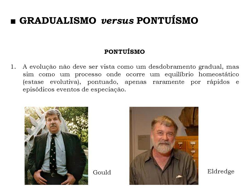 ■ GRADUALISMO versus PONTUÍSMO