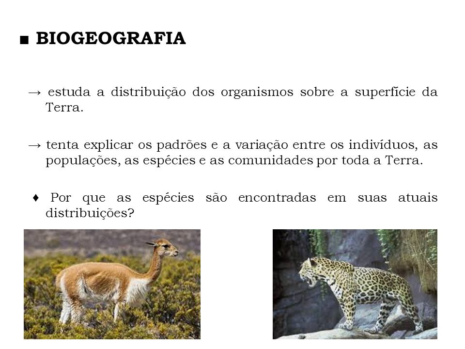 ■ BIOGEOGRAFIA → estuda a distribuição dos organismos sobre a superfície da Terra.