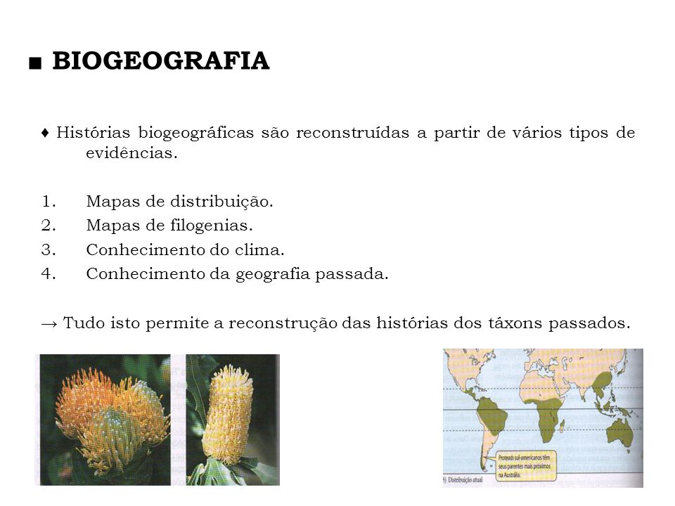 ■ BIOGEOGRAFIA ♦ Histórias biogeográficas são reconstruídas a partir de vários tipos de evidências.