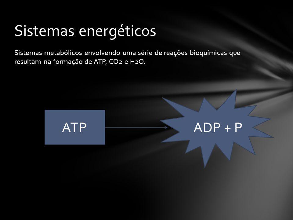 Sistemas energéticos ATP ADP + P